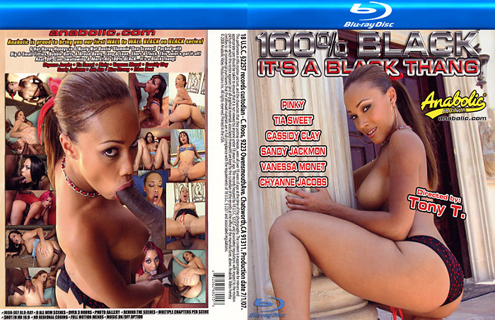 The Slayer Arrow US DVD / Blu-Ray Combo DiabolikDVD