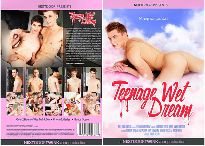 adult movie wet dreams