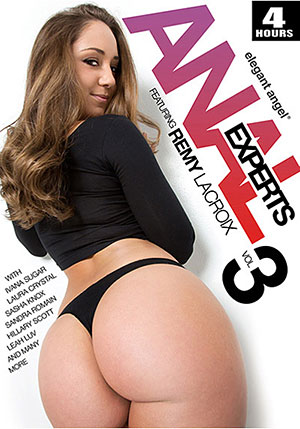Anal Experts 3