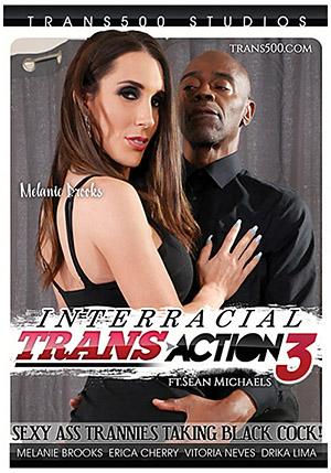 Interracial Trans Action 3: Featuring Sean Michaels