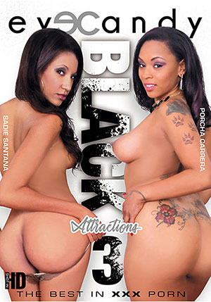 Black Attractions 3