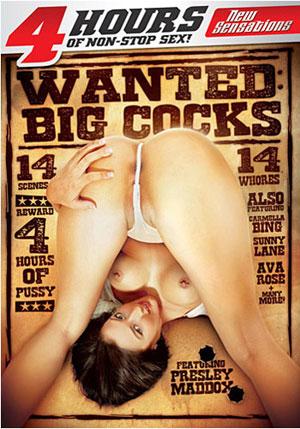 Wanted: Big Cocks