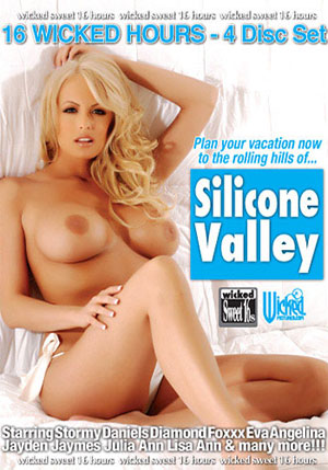 Silicone Valley (4 Disc Set)