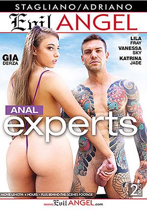 Anal Experts (2 Disc Set)
