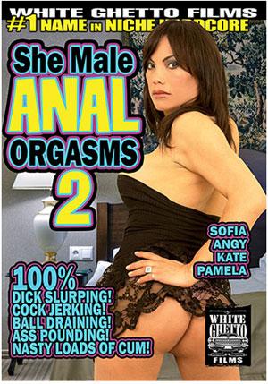 She Male Anal Orgasms 2