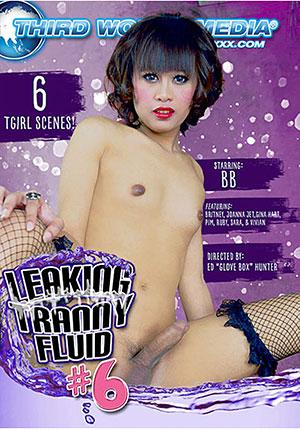 Leaking Tranny Fluid 6