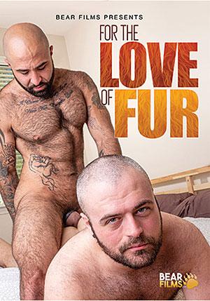 bear film gay videos studios