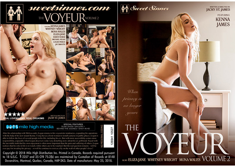The Voyeur 2 Adult Movie