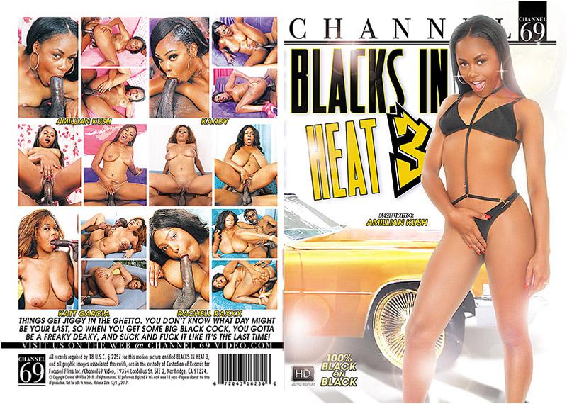 Blacks In Heat 3 Adult Movie